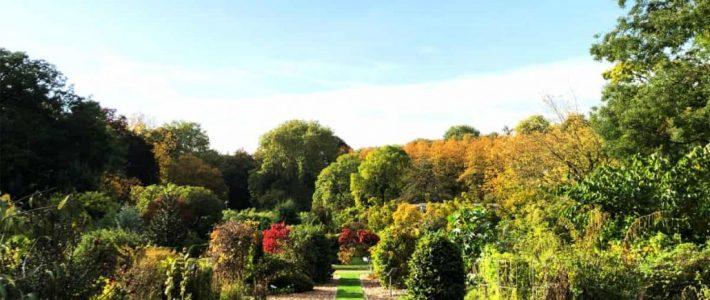 Pflanzzeit Herbst
